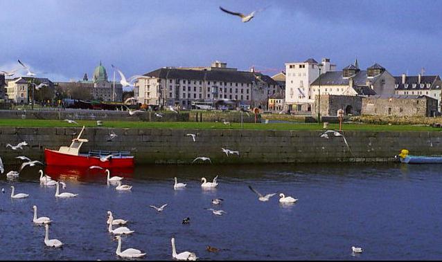 irlanda Galway Family programme